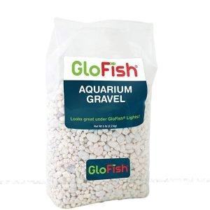 glofish blanco